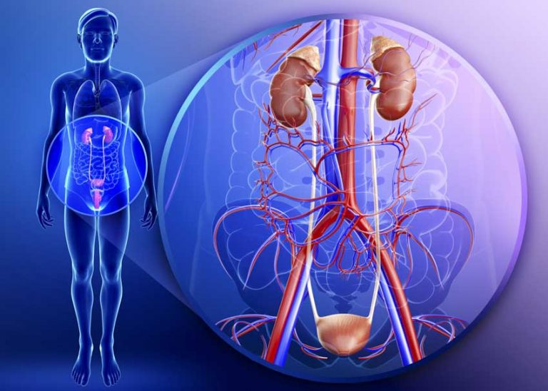 Acupuncture Improves Spinal Cord Injury Bladder Function
