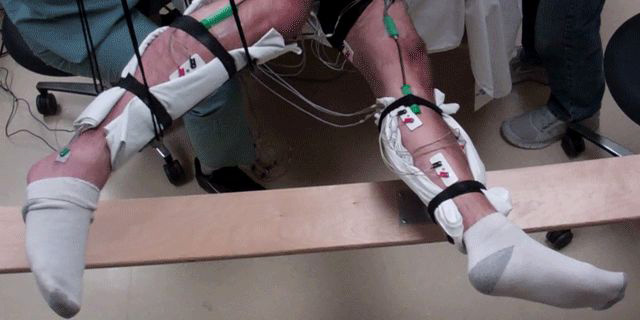 UCLA researcher tackles paralysis with electrical stimulation devices