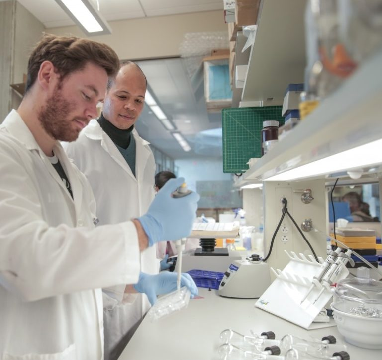 Engineer aims to grow spinal tissue in lab