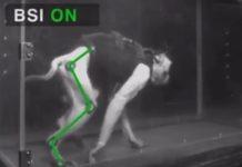 paralyzed primates walk