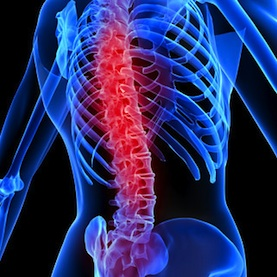 Rewiring a Damaged Spinal Cord