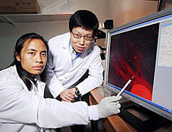 Pinay scientist raises hope for the disabled